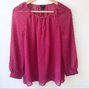 J. Crew Long Sleeve Sheer Blouse XS